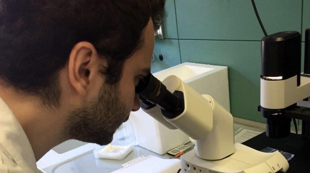 """""""Più dignità per i ricercatori"""": prosegue la battaglia di Marco Giaimis"""